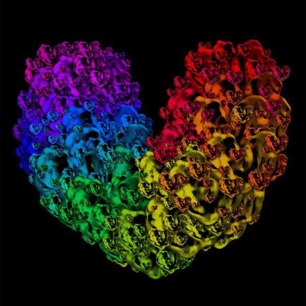 No 075 heartbeats